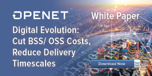 Digital Evolution: Cut BSS/ OSS Costs, Reduce Delivery Timescales