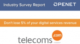 Assurance and Digital Services - Industry Survey Report