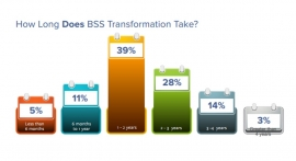Research Report: BSS and Digital Transformation