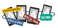 Interoperability between Mobile Money Services