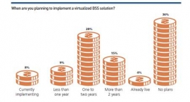 67% of Telecom Professionals Believe Content Bundling Is Key to Monetizing New Services - Telecoms.com/Openet BSS Report